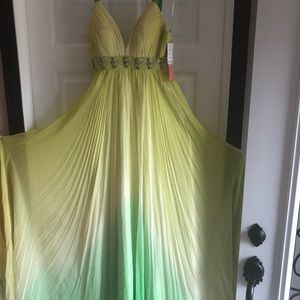 NWT floor length formal gown